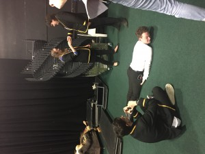 Pupils were asked to create a tableaux of the result of greed across the class system.